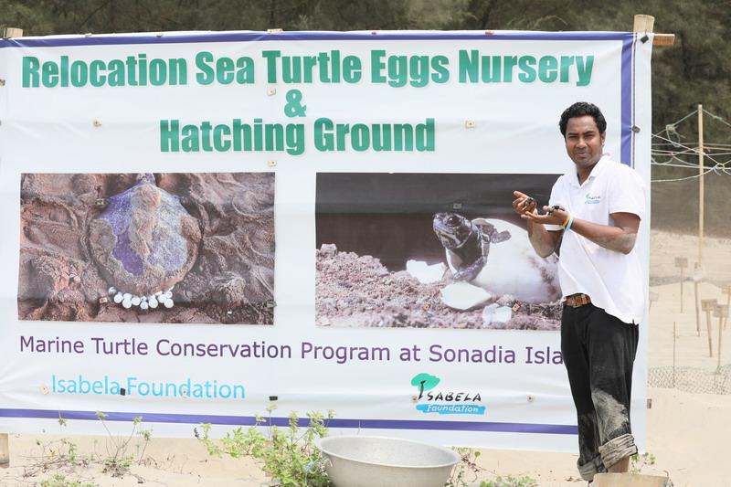 Marine Turtle Conservation Program at Sonadia Island